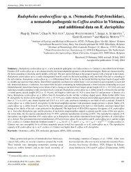 Radopholus arabocoffeae sp. n. (Nematoda ... - Donimabe.org.vn