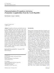 Characterization of Longidorus helveticus - Russian Journal of ...
