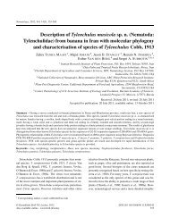 Description of Tylenchulus musicola sp. n. (Nematoda ...