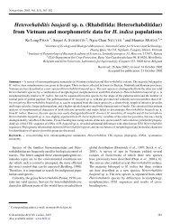 Heterorhabditis baujardi sp. n. - Russian Journal of Nematology