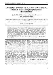 Heterodera pratensis sp - Russian Journal of Nematology
