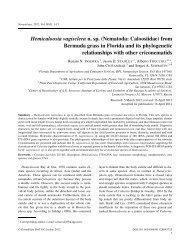 Hemicaloosia vagisclera n. sp. (Nematoda: Caloosiidae) - Russian ...