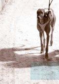 ownership initiative [greyhounds] - RWWA Home - Page 2