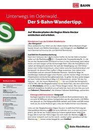 2. Königsstuhl (PDF, 371KB) - S-Bahn RheinNeckar