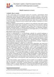 Összefoglaló és ajánlás az Árpád Tiszk projeket keretében ...