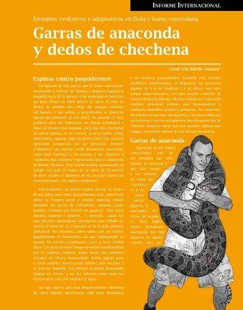 Garras de anaconda y dedos de chechena - Saber ULA