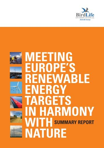 Meeting Europe's Renewable Energy Targets in Harmony with