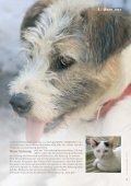 das recht der tiere das recht der tiere - Bund gegen Missbrauch der ... - Seite 5