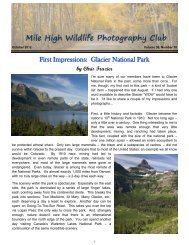 October 2012 - Mile High Wildlife Photography Club