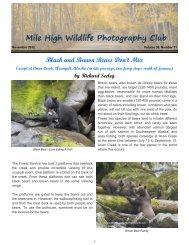 November 2012 - Mile High Wildlife Photography Club