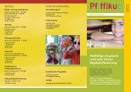 Faltblatt Pfiffikus - Friedrich-Schiller-Gymnasium