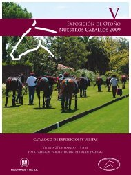 Exposición de Otoño NUEStROS CAbAllOS 2009 - Asociación ...