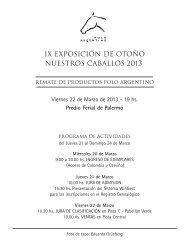 T/E - Asociación Argentina de Criadores de Caballos de Polo