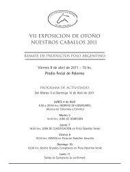 Lote nº - Asociación Argentina de Criadores de Caballos de Polo