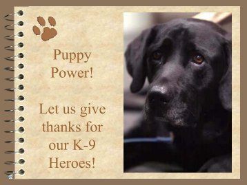 Let us give thanks for our K-9 Heroes! - Safe Harbor Lab Rescue
