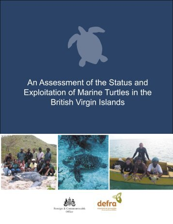 Status and Exploitation of Marine Turtles in the British ... - Seaturtle.org