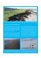 Die Folgen des Klimawandels für das Leben in der Nordsee - Page 7