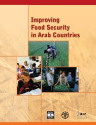 Improving Food Security in Arab Countries