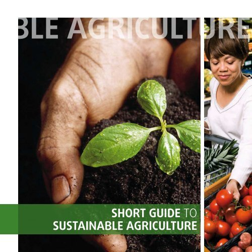 SHORT GUIDE TO SUSTAINABLE AGRICULTURE - SAI Platform