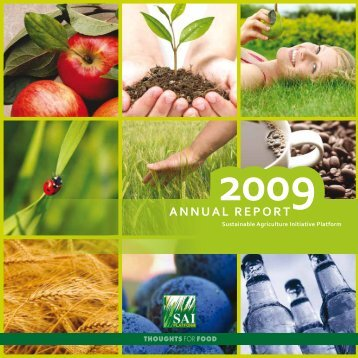 AnnuAl report - SAI Platform