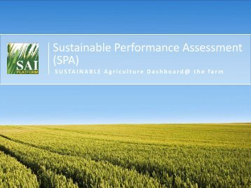 Sustainable Performance Assessment (SPA) - SAI Platform