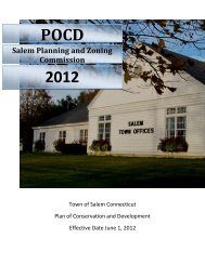 2012 POCD - Town of Salem