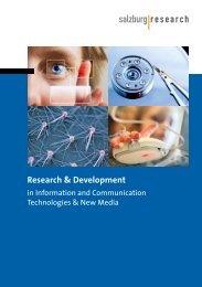English Version - Salzburg Research Forschungsgesellschaft