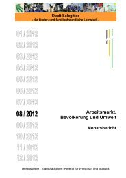 Monatsbericht August 2012 - Stadt Salzgitter