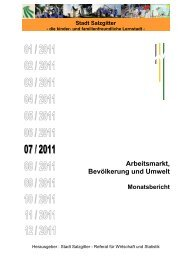 Monatsbericht Juli 2011 - Stadt Salzgitter