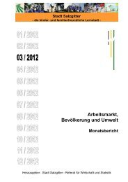 Monatsbericht März 2012 - Stadt Salzgitter