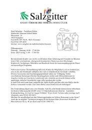 Weitere Einzelheiten zu den Kindergeburtstagen ... - Stadt Salzgitter