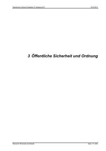 Statistisches Jahrbuch 2011: Öffentliche Sicherheit ... - Stadt Salzgitter