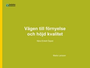 Skellefteå kundtjänst processer.pdf - Offentliga rummet