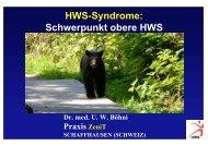 HWS-Syndrome: Schwerpunkt obere HWS - bei der SAMM