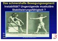 Das schmerzhafte Bewegungssegment: Instabilität ... - bei der SAMM