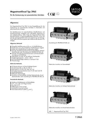 Typenblatt T 3965 DE (2010-10) - Samson