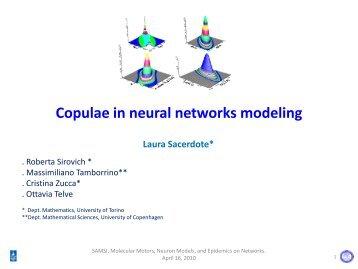 Copulae in Neural Networks Modeling - SAMSI