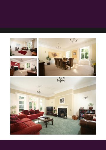 Download Brochure - Sanderson Young