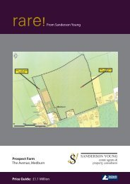 Download Brochure - Sanderson Young