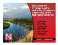 Juniperus virginiana - Nebraska Water Center