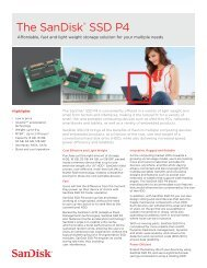 The SanDisk® SSD P4