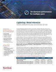 Lightning® Read-Intensive - SanDisk