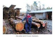 Materialene til trerennen tar form på - Sandvikens Bataljon