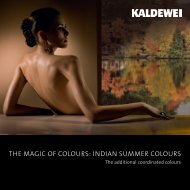 THE MAGIC OF COLOURS: INDIAN SUMMER COLOURS