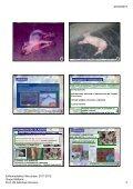 20/04/2012 Enfermedades Infecciosas. 2011 ... - Sanidad Animal - Page 2