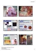 20/04/2012 Enfermedades Infecciosas. 2011 ... - Sanidad Animal - Page 4