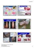 INTRODUCCIÓN - Sanidad Animal - Page 2