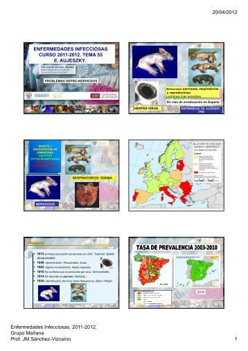 tasa de prevalencia 2003 tasa de prevalencia ... - Sanidad Animal