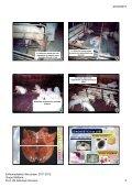 tasa de prevalencia 2003 tasa de prevalencia ... - Sanidad Animal - Page 4