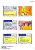 tasa de prevalencia 2003 tasa de prevalencia ... - Sanidad Animal - Page 6